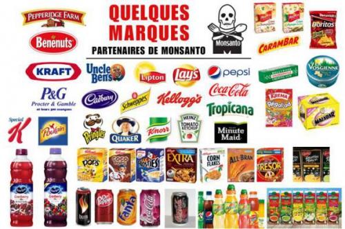 Monsanto boycott.jpg