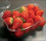 fraise espagnole.jpg