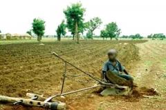 agroécologie,cop21