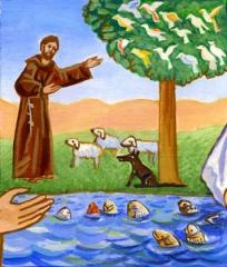 encyclique,laudato,pape,francois